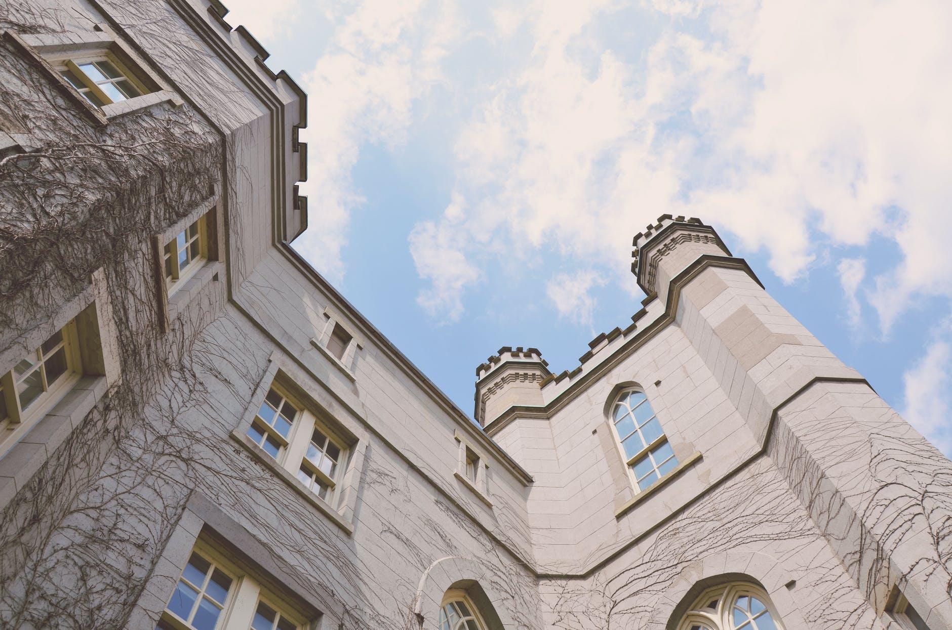 sky buildings castle vines